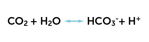 13-kjemisk-formel